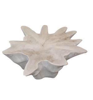 Bleached Organic Table